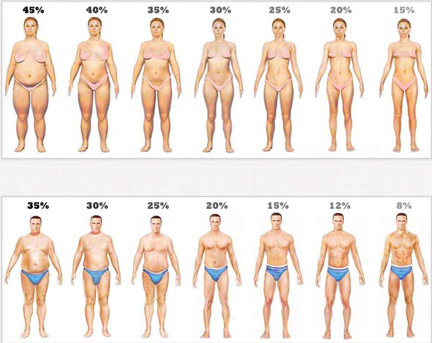 25 testzsír fogyás